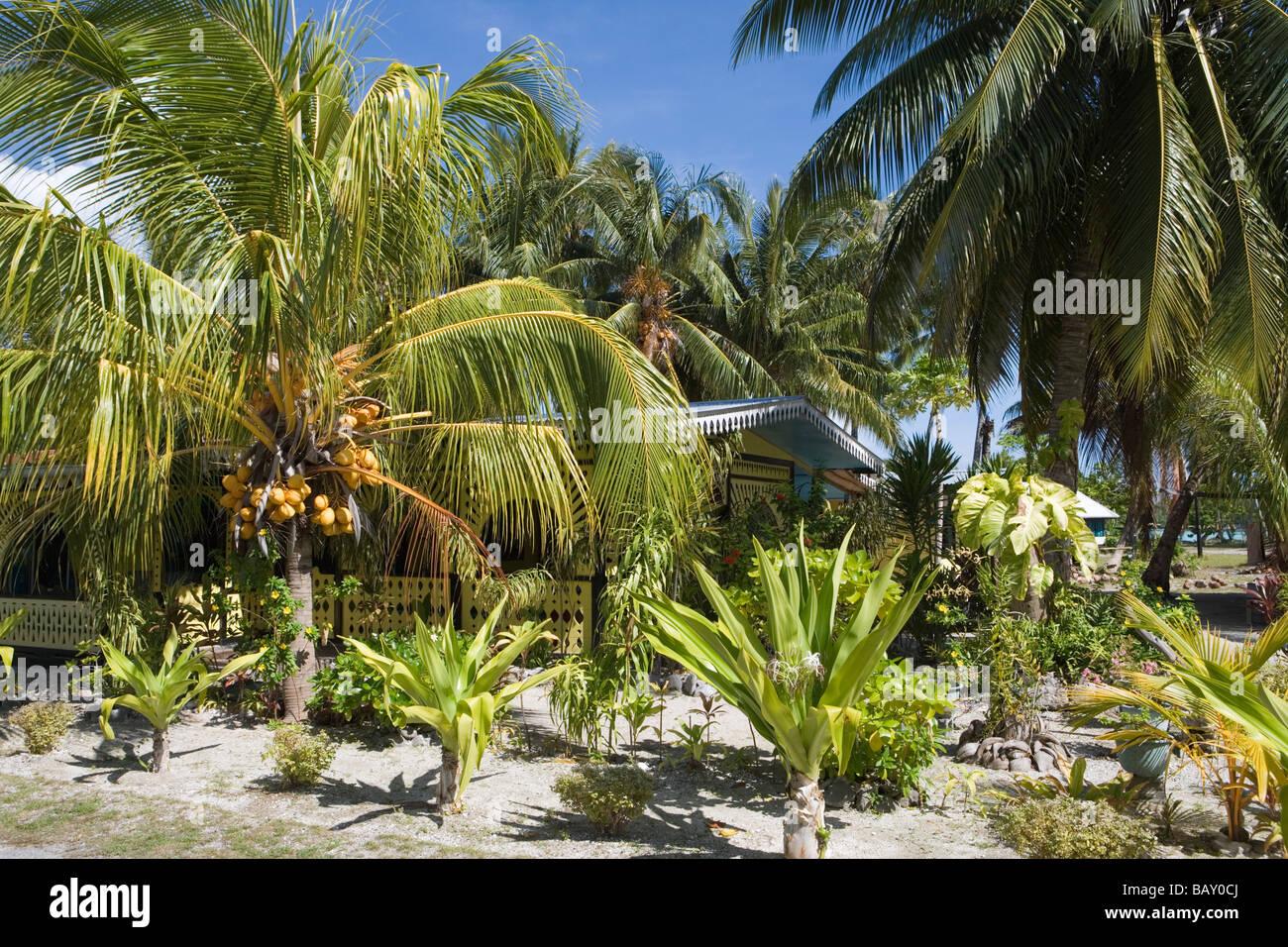 Tropical garden and house, Avatoru, Rangiroa, The Tuamotus, French Polynesia - Stock Image
