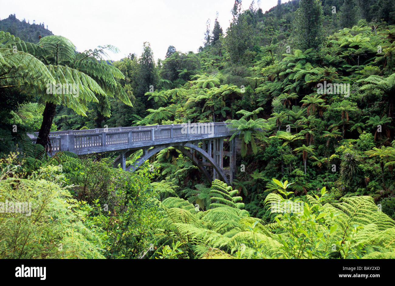 The Bridge to Nowhere in the greens, North Island, New Zealand - Stock Image