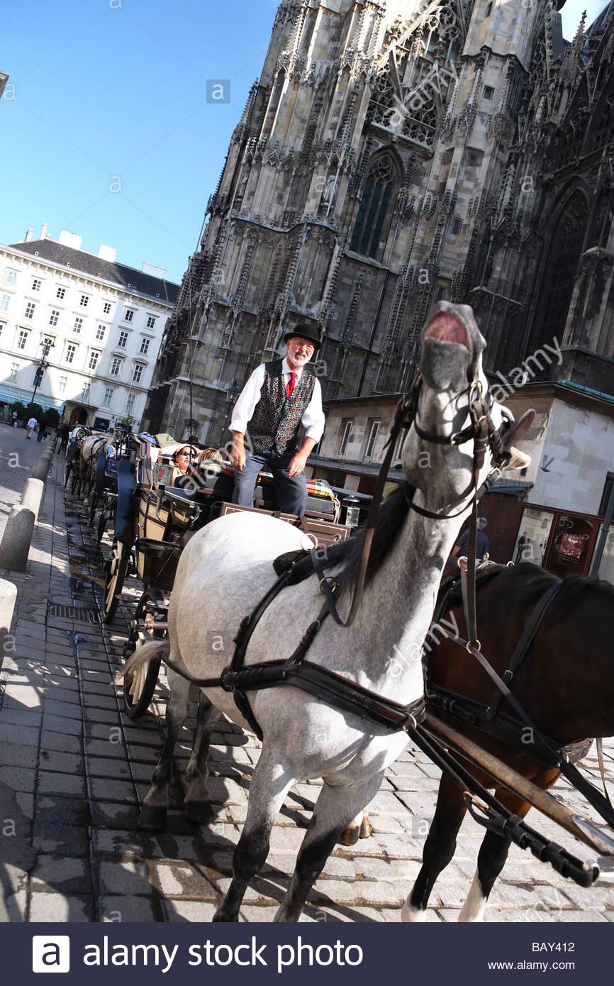 Two horse carriage with coachman, Fiaker, Stephansplatz, Vienna, Austria - Stock Image