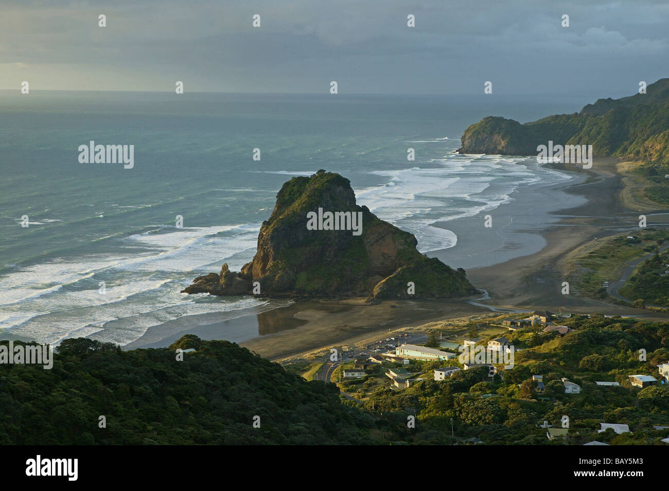 Piha Beach and Lion Rock, west coast near Auckland, New Zealand Stock Photo