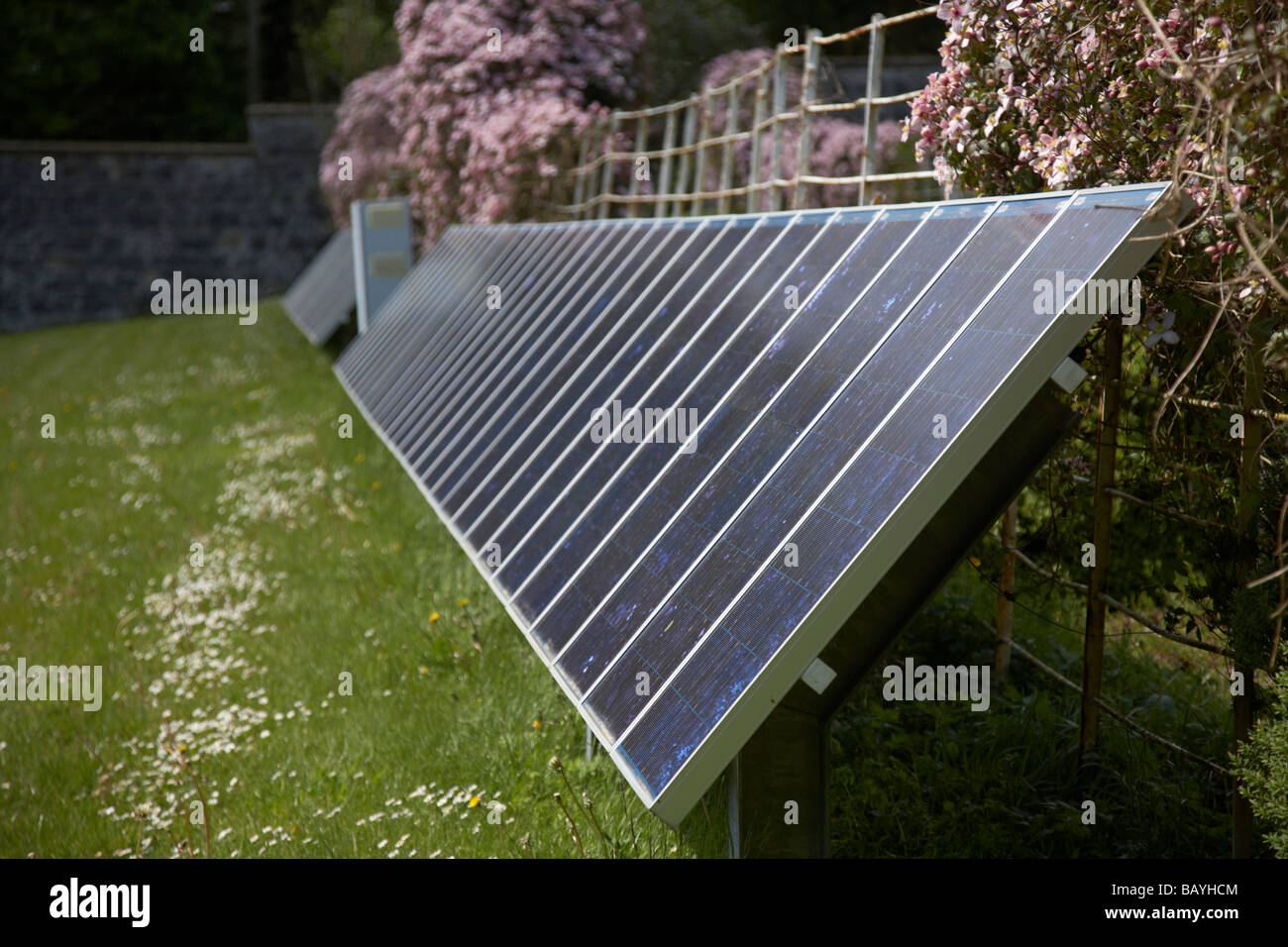 sun shining down on a arrays of blue tinted polycrystalline silicon photovoltaic solar panels in county tyrone northern - Stock Image