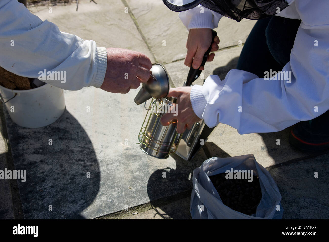 Lighting the smoker used to calm Bees, in preparation to inspect a bee hive. - Stock Image