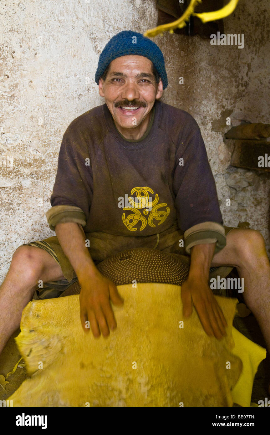 Craftsman rubbing an animal skin - probably sheep or goat, to make it softer. The bright yellow colour is produced - Stock Image