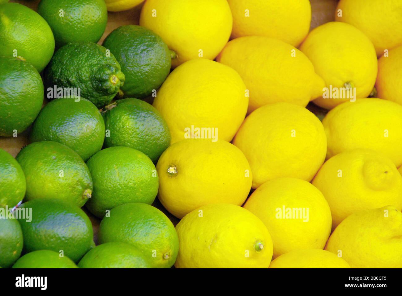 Limone Zitrone lime citrous 03 Stock Photo