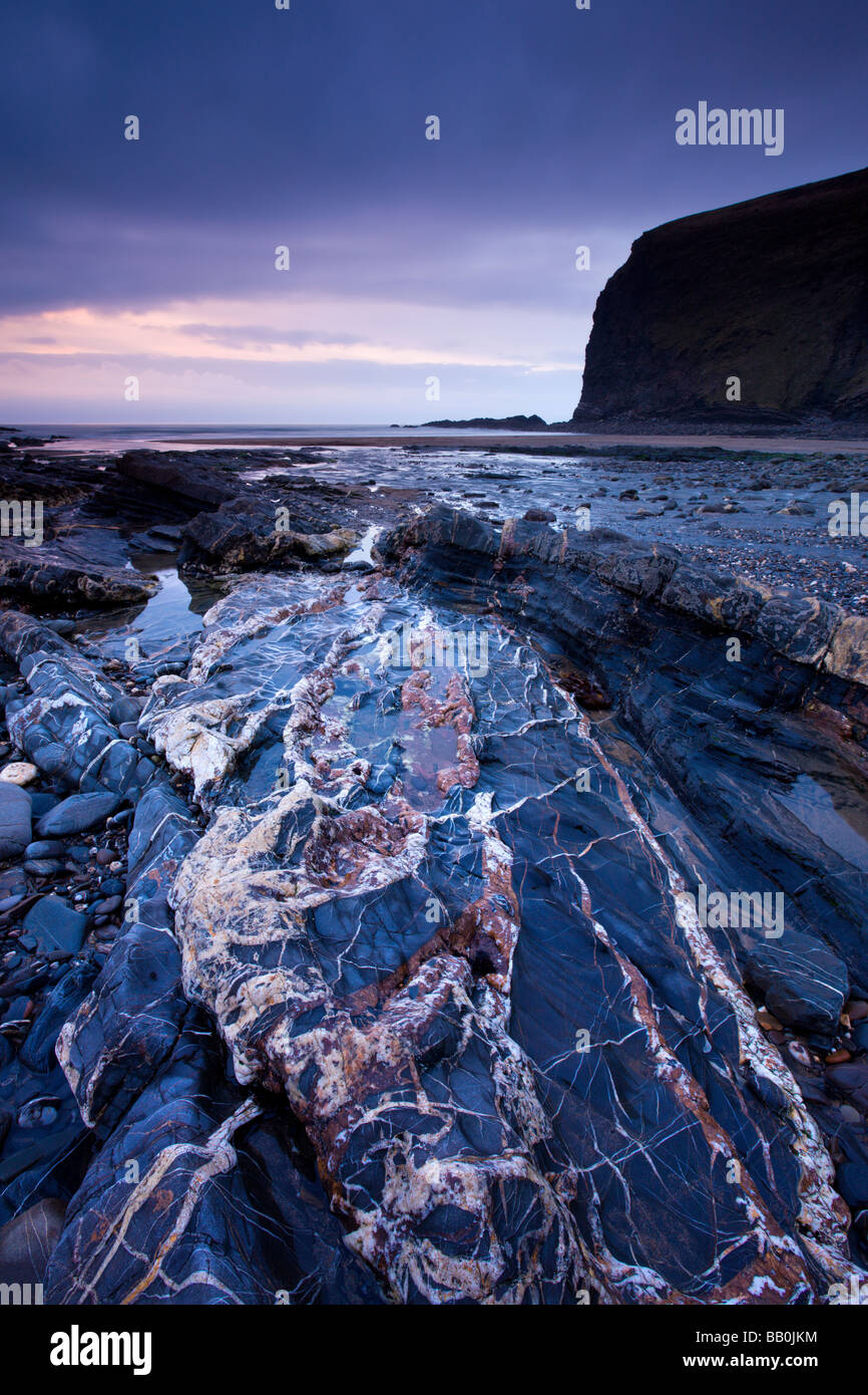 Quartz veins in the rock bed at Crackington Haven Cornwall England February 2009 - Stock Image