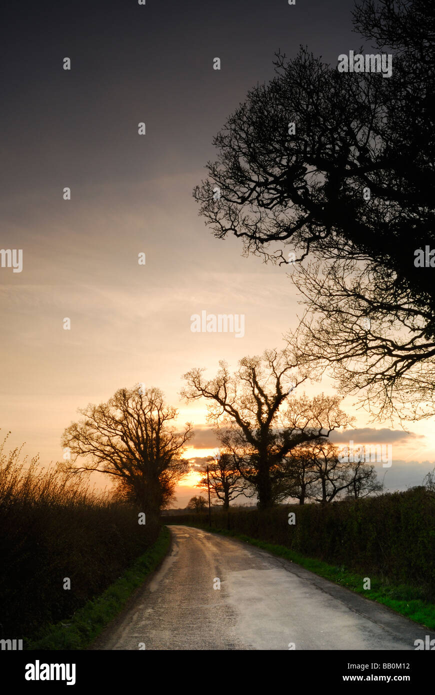 Narrow country lane in the small village of Seend near Devizes Wiltshire UK Stock Photo