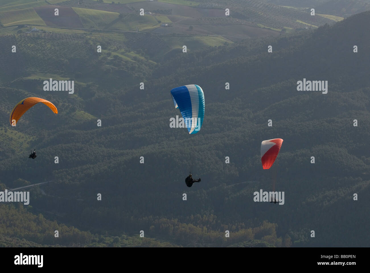 3 Paragliders in flight - Stock Image