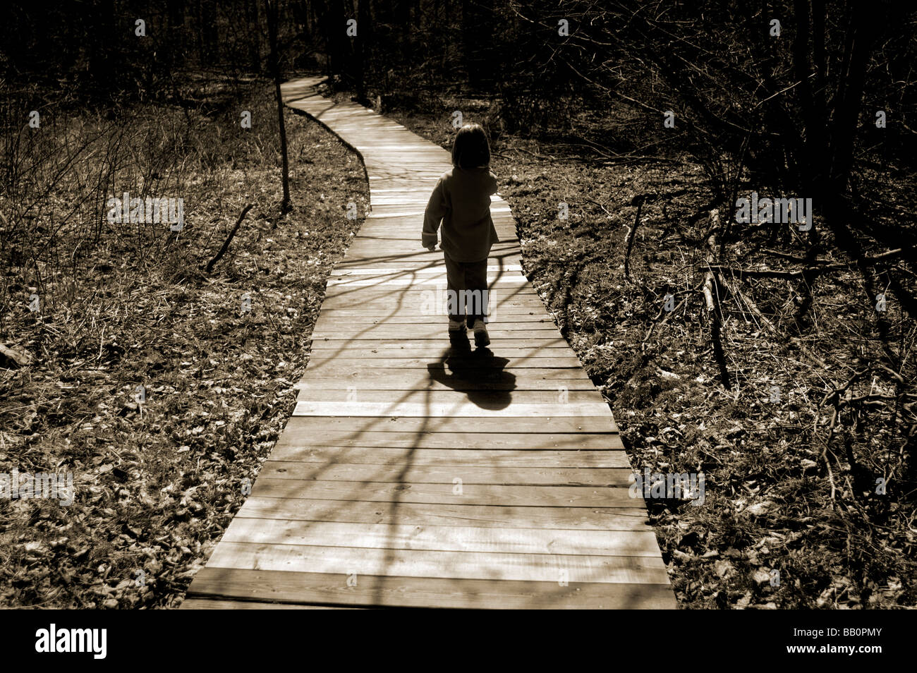 A child walks along a boardwalk during a walk in the woods - Stock Image