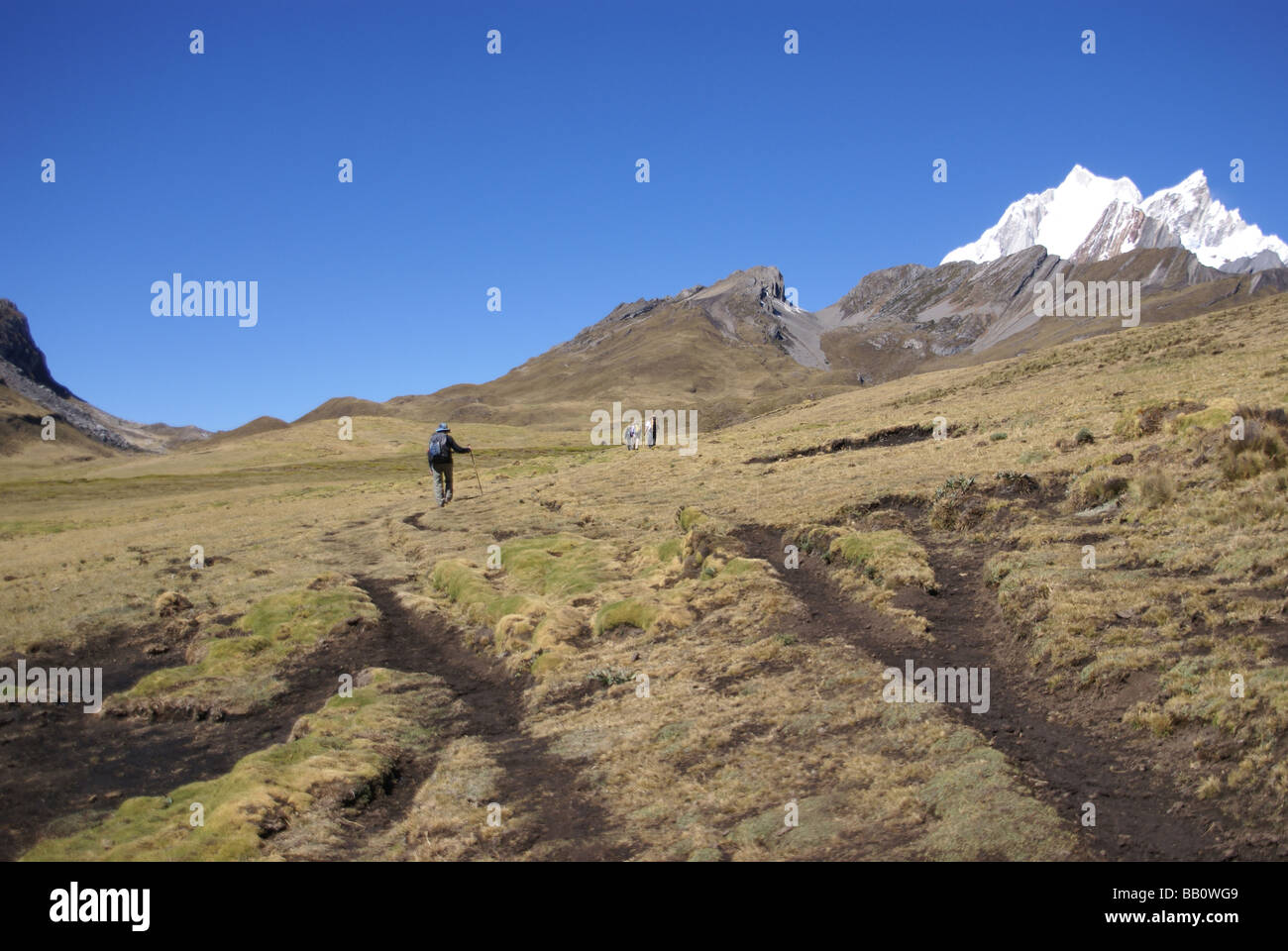 Hikers on trail in high Andes Yerupaja in background Cordillera Huayhuash Andes Peru South America - Stock Image