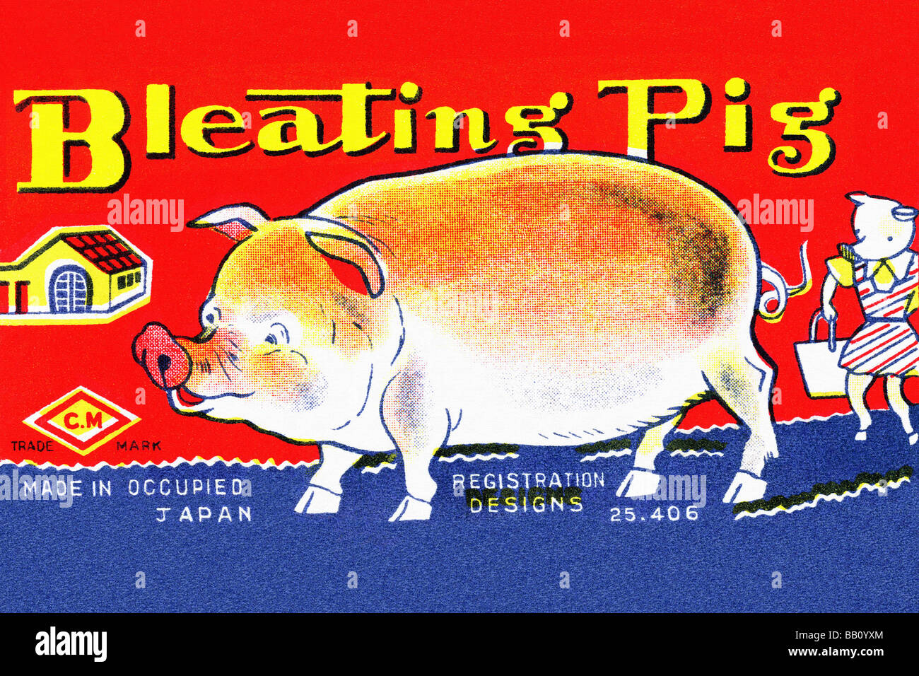 Bleating Pig - Stock Image