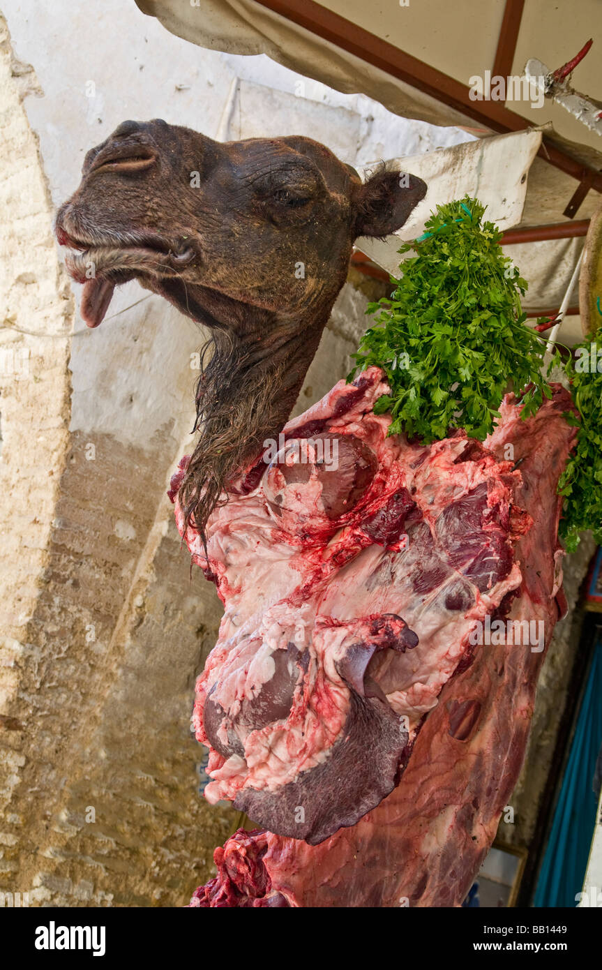 Severed camel head advertising camel meat for sale at butcher's shop in the medina of Fes in Morocco - Stock Image