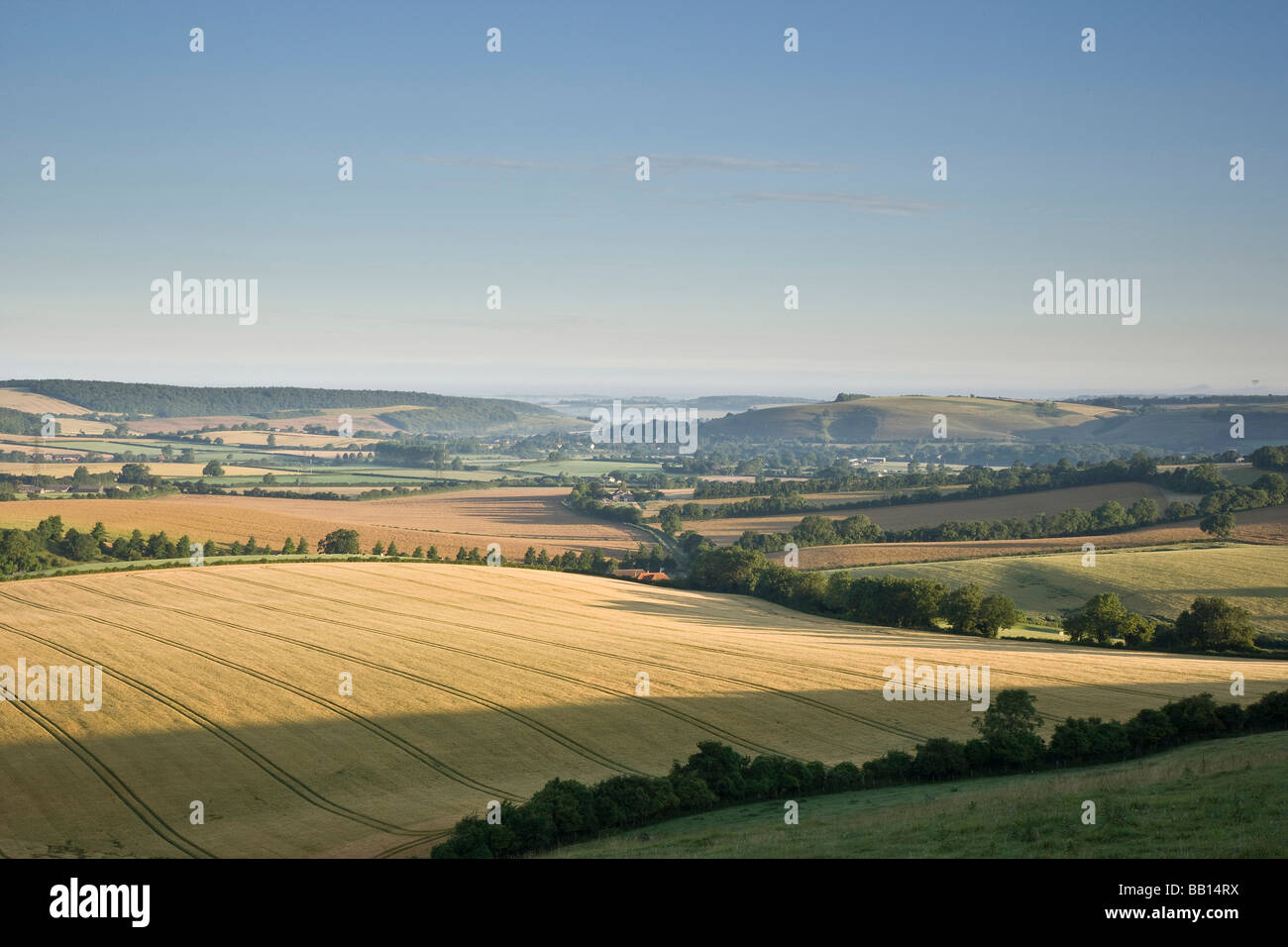 The Meon Valley at sunrise in summer Stock Photo