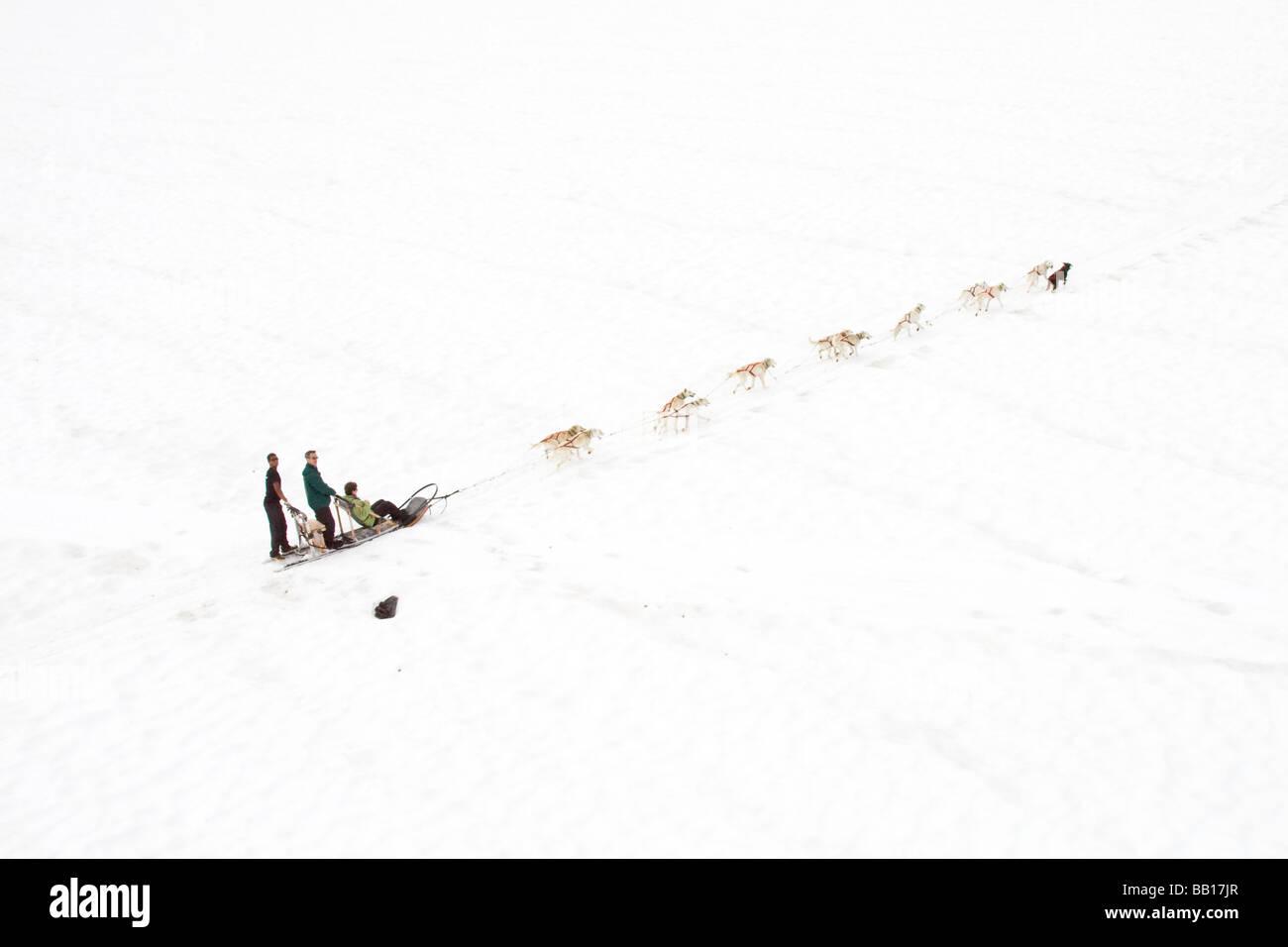 Dogsledding on a glacier in Alaska - Stock Image