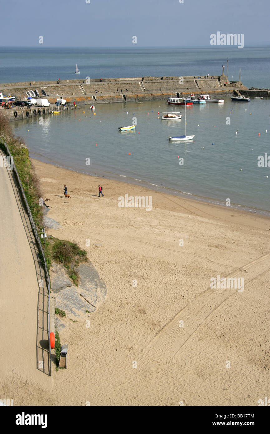 Town of New Quay, Wales. Elevated view of New Quay beach, with leisure and fishing vessels moored in New Quay harbour. - Stock Image