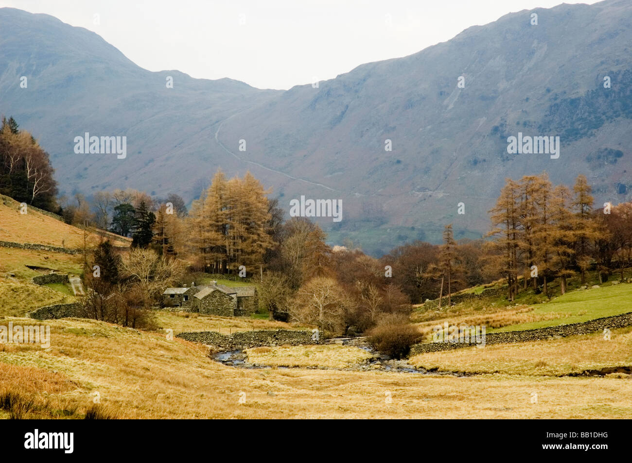 View back down Deepdale in the English Lake District with the path up Boardale Hause in the background. Stock Photo