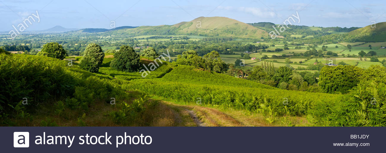 View towards The Lawley from Long Mynd, Shropshire, England, UK. - Stock Image