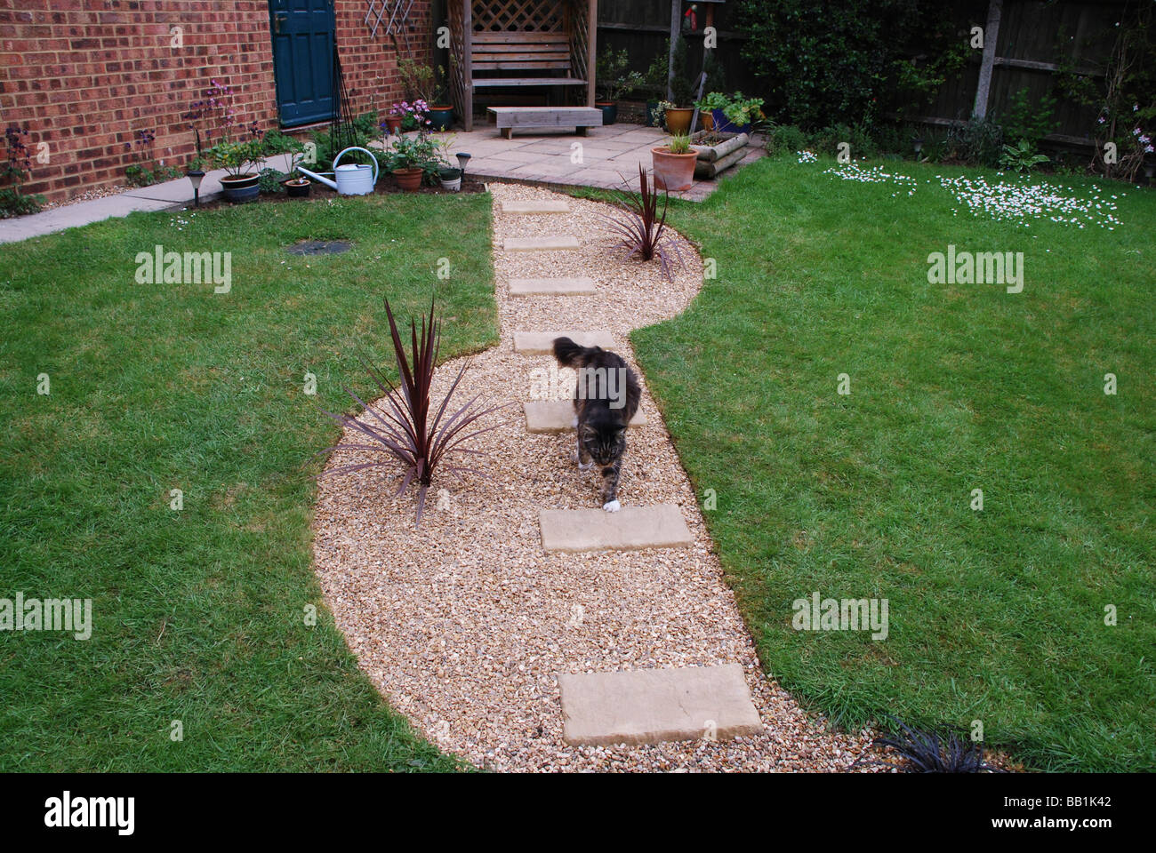 Back Garden Of Modern British House With Cat Walking Along A Newly Laid  Gravel Path