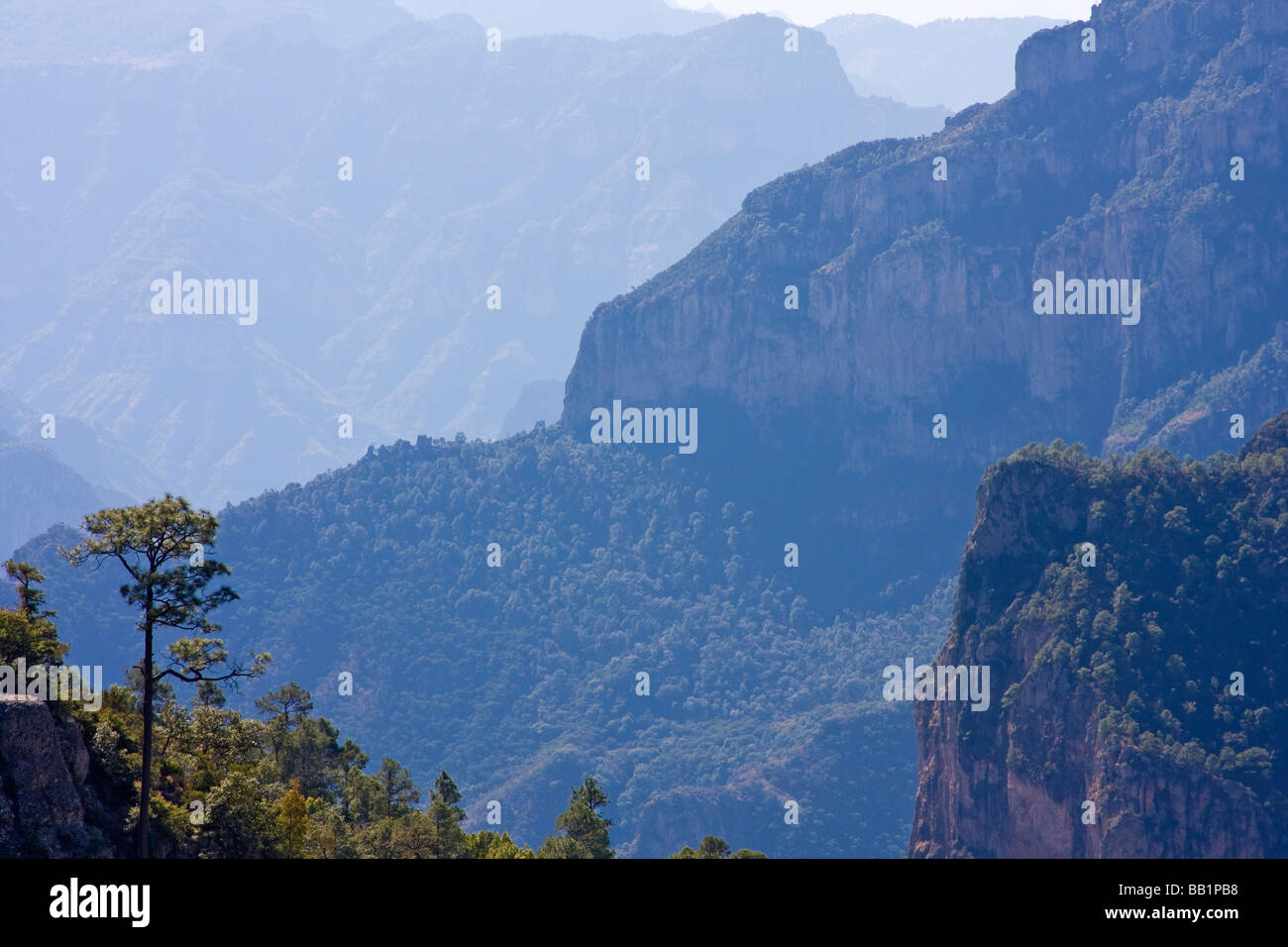 Copper Canyon in Mexico seen from a viewpoint. - Stock Image