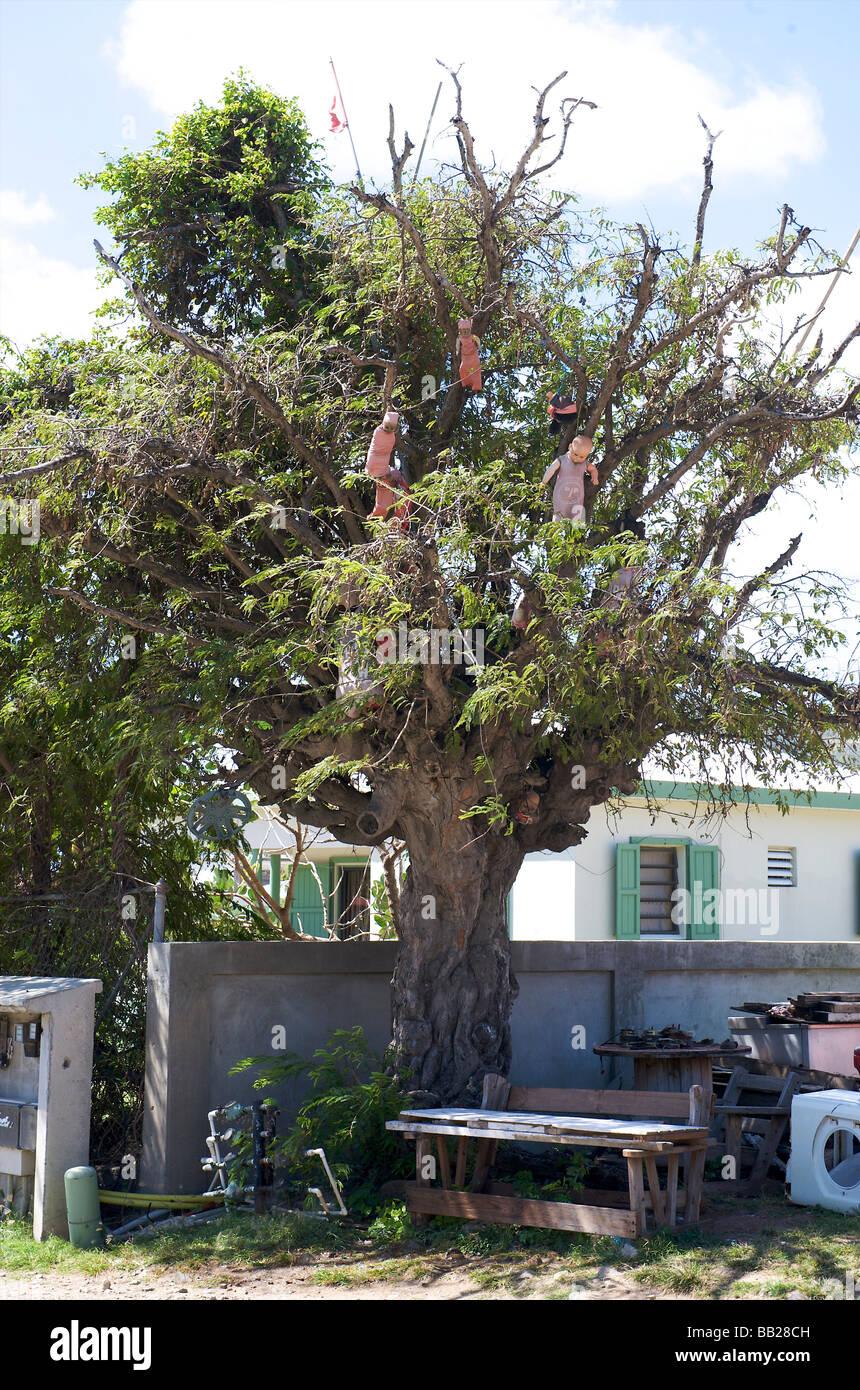 antillen antilles bovenwinden bovenwindse caribbean day daytime dutch eiland eilanden french indies island lesser - Stock Image