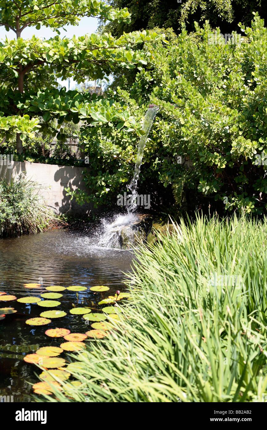Ichimura Japanese Garden, Watson Island, Miami.   Stock Image