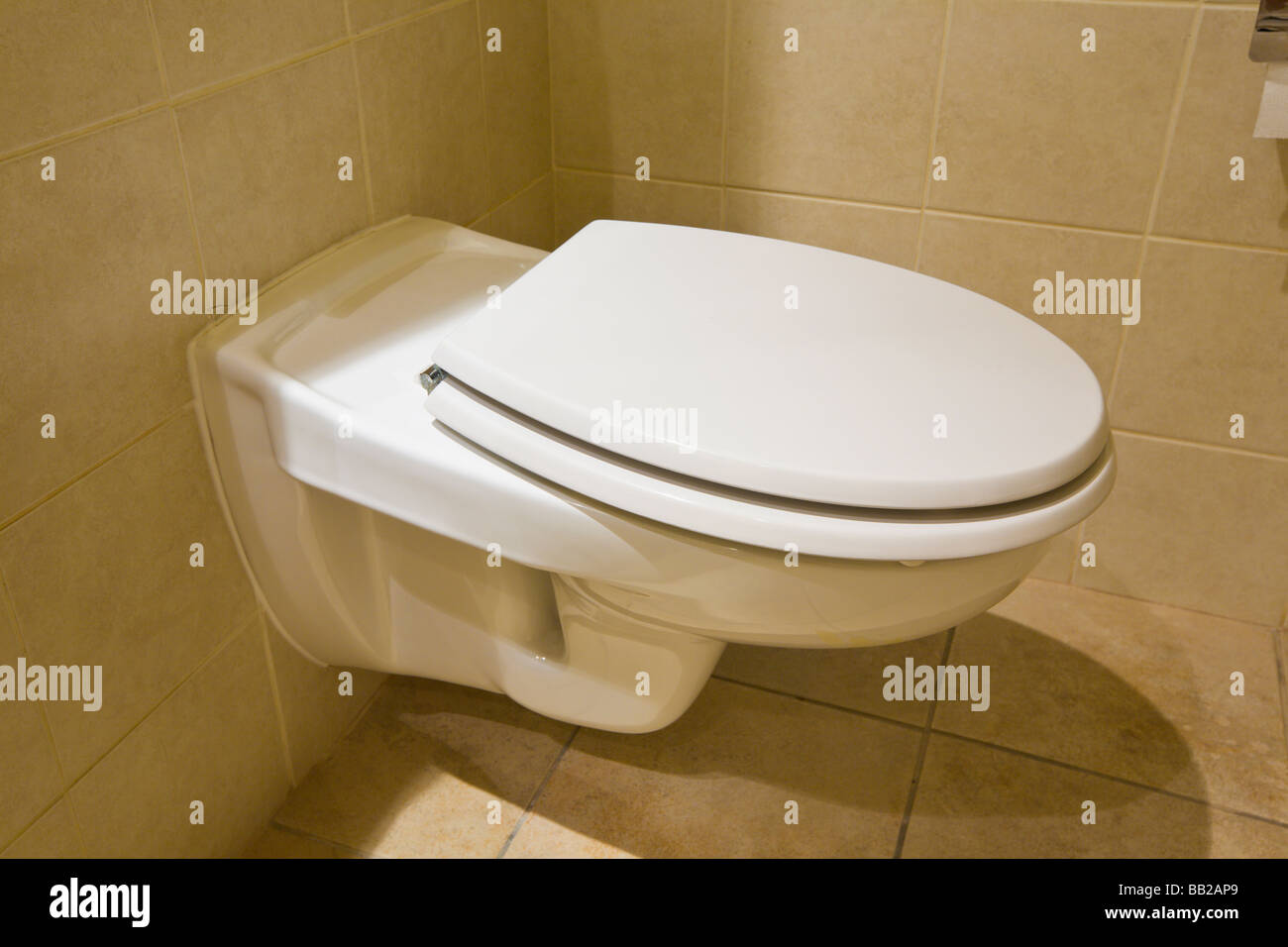 Wall Hung Toilet Stock Photo 24023953 Alamy