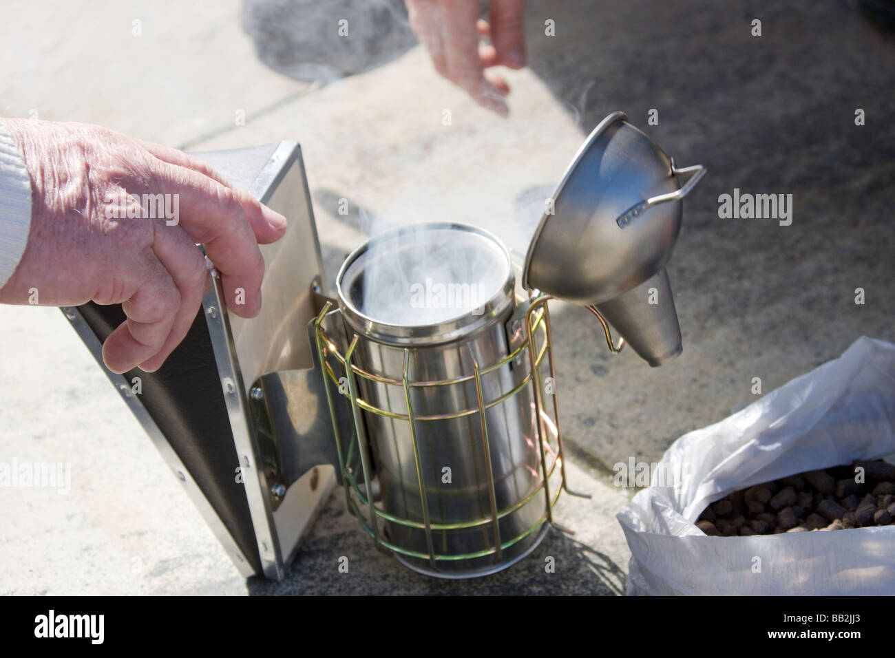 Pumping air while lighting the smoker used to calm Bees, in preparation to inspect a bee hive. - Stock Image