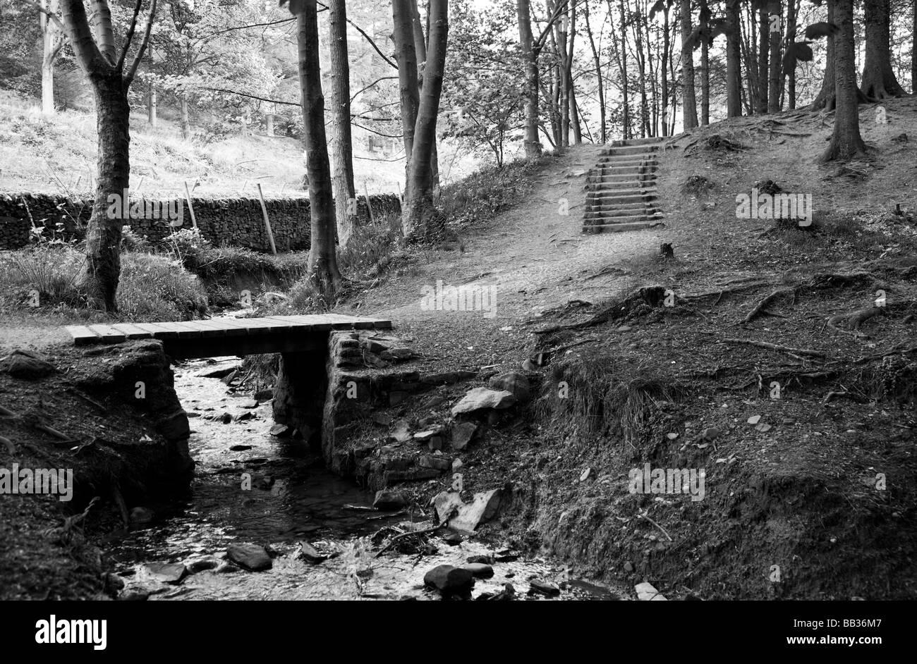 Stream and bridge - Stock Image