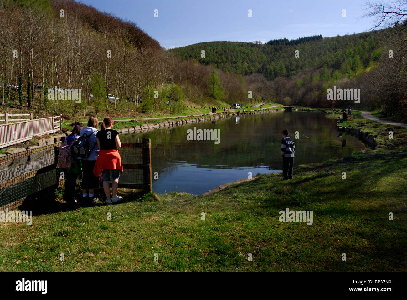 Cwmcarn Forest Drive Wales Stock Photo: 24043516 - Alamy