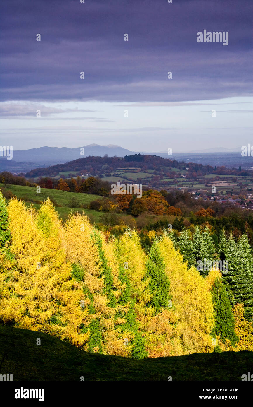 View from the Cotswold escarpment with the Malvern Hills in the distance as autumn sunshine lights up conifer forest - Stock Image