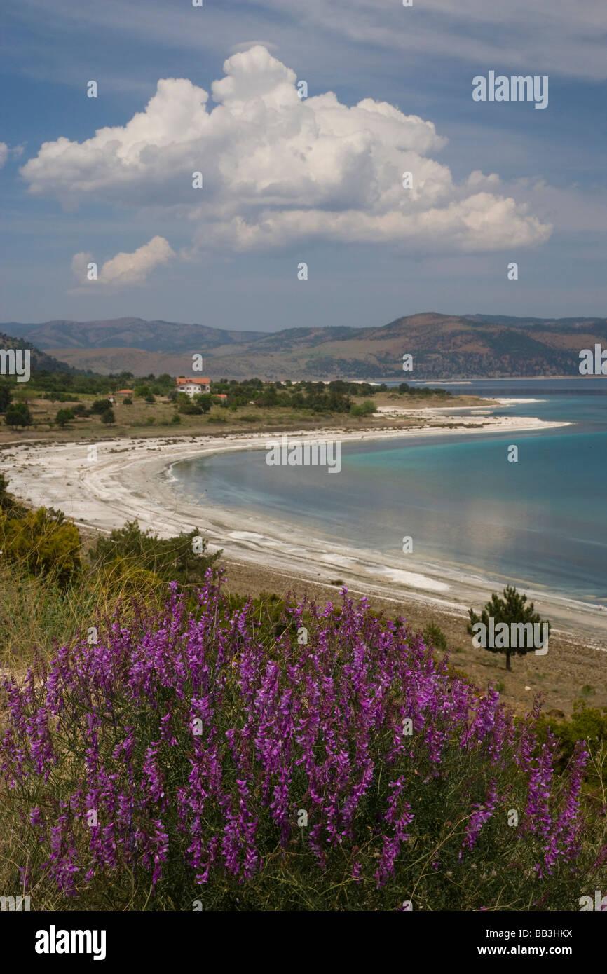 Middle East Turkey Soda Lake and wildflowers on the way west to Kusadasi Stock Photo