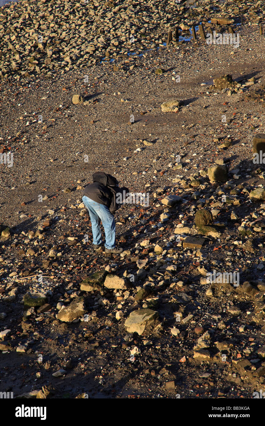 A man searches the Thames Beach at low tide near Southwark London UK - Stock Image