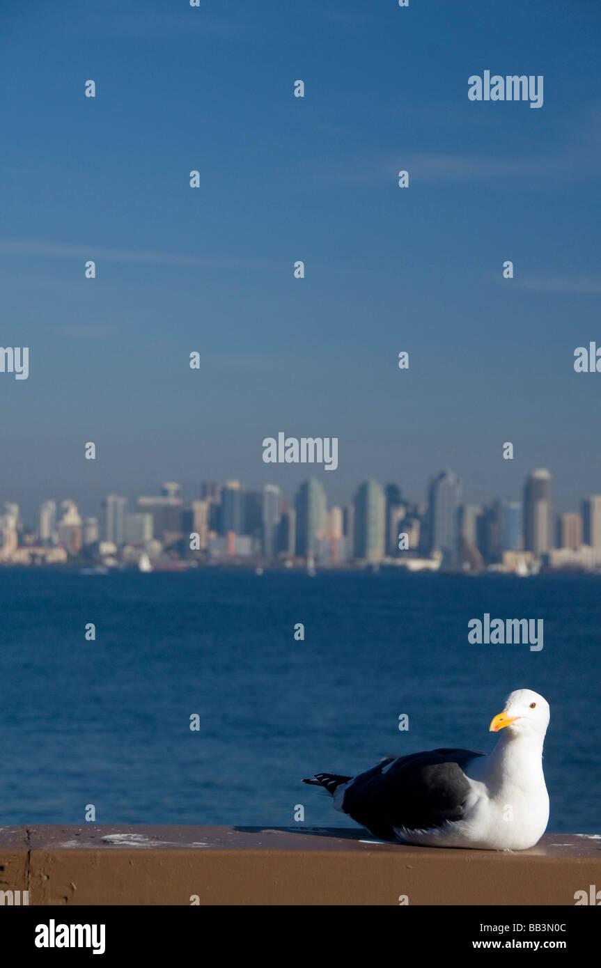California, San Diego. View of downtown San Diego. - Stock Image