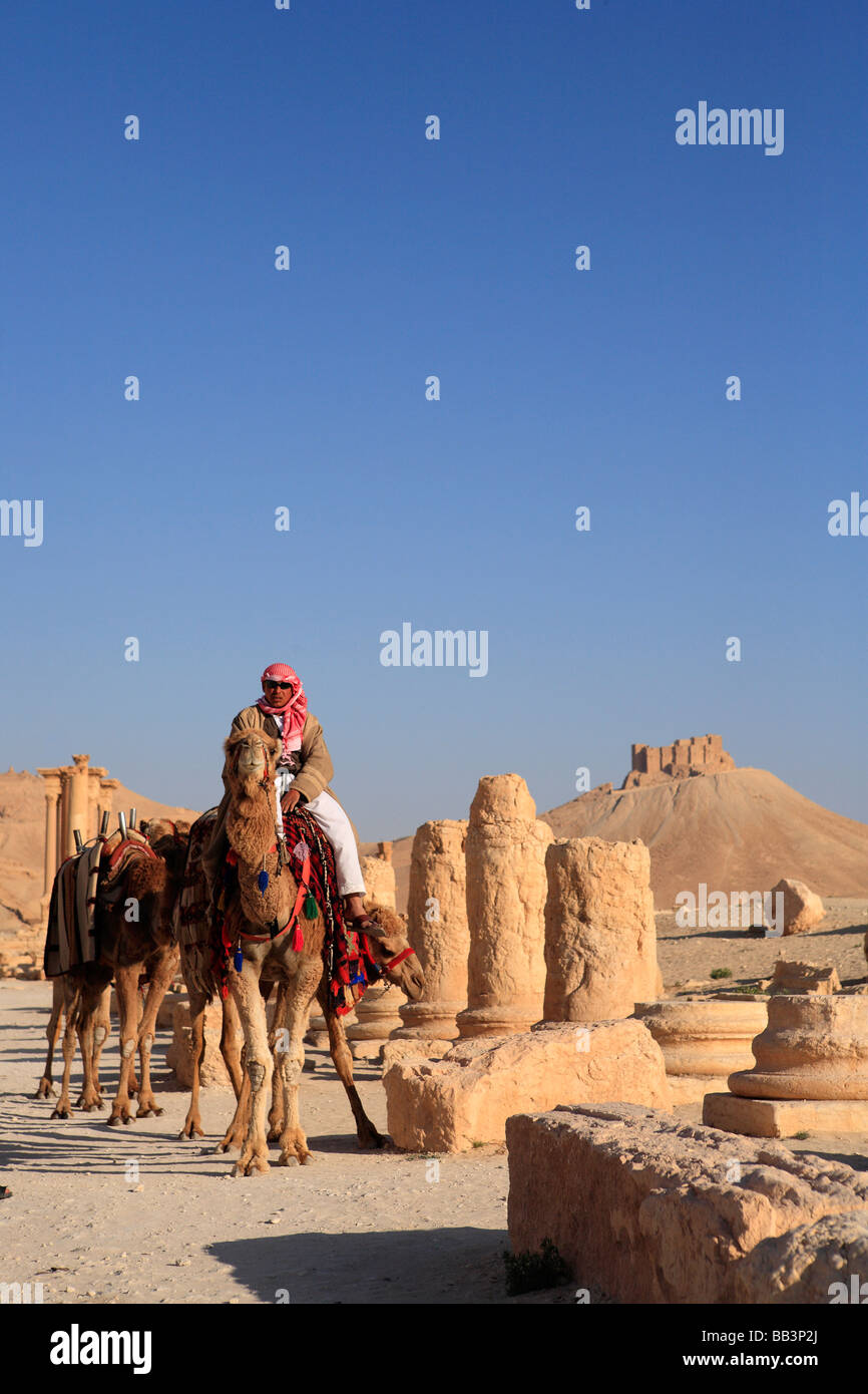 Man on Camel, Grand Colonnaded Street, Palmyra, Syria - Stock Image