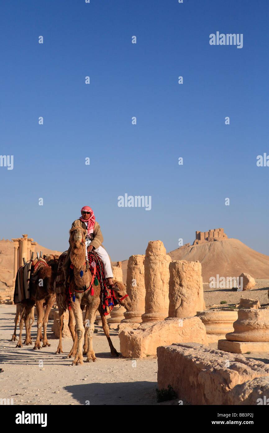 Man on Camel, Grand Colonnaded Street, Palmyra, Syria Stock Photo