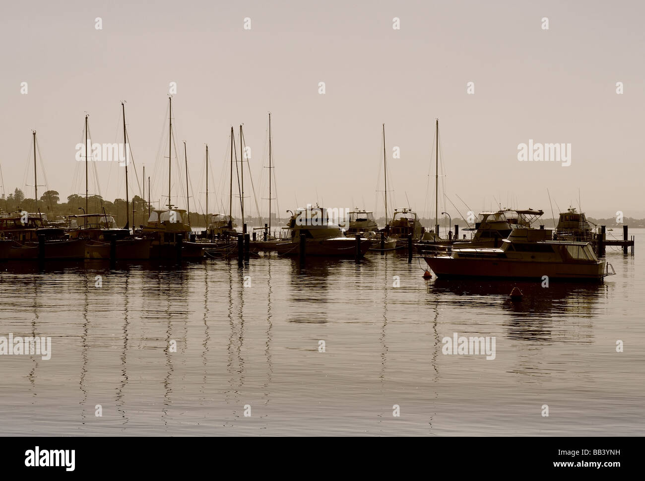 Swan River Early Morning Stock Photo