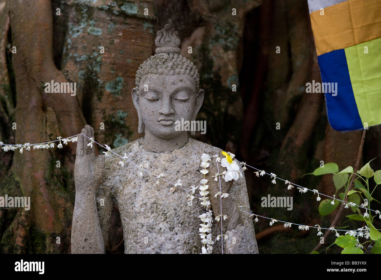Buddha statue under the Bo, Bodhi, Tree inside the Gangarama, Gangaramaya, temple in Colombo, Sri Lanka. - Stock Image