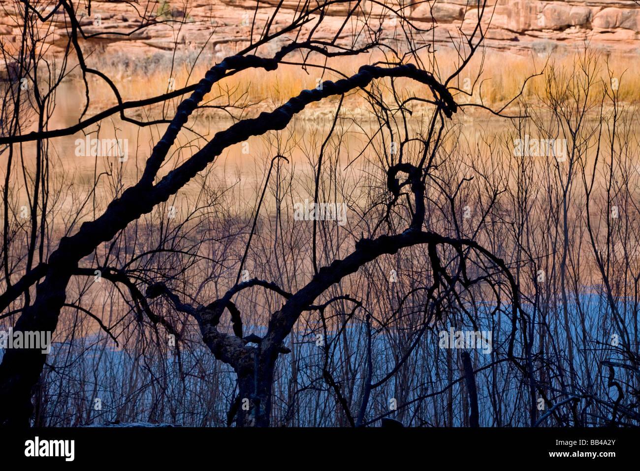 Moab, Utah 2007 - Stock Image