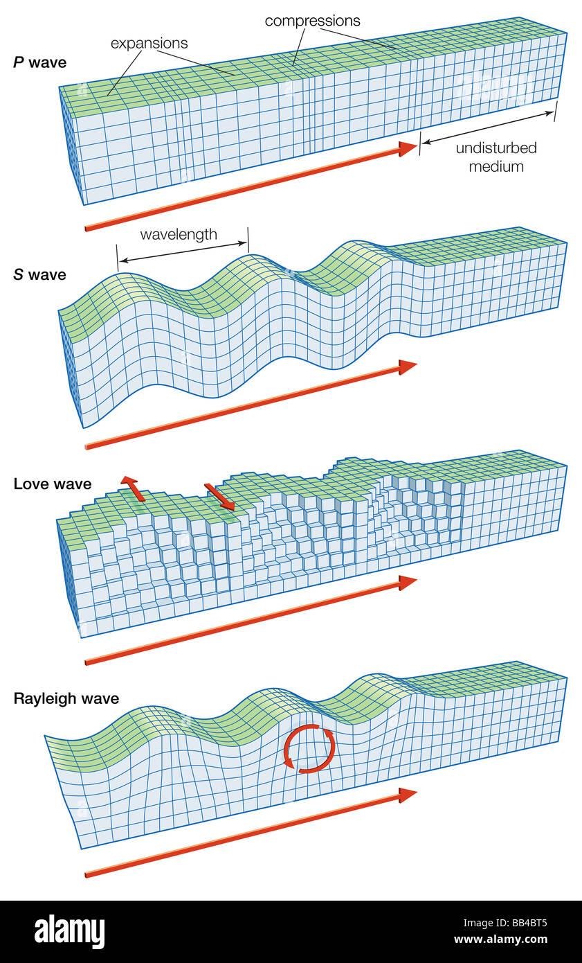 The main types of seismic waves: P, S, Love, and Rayleigh. Stock Photo