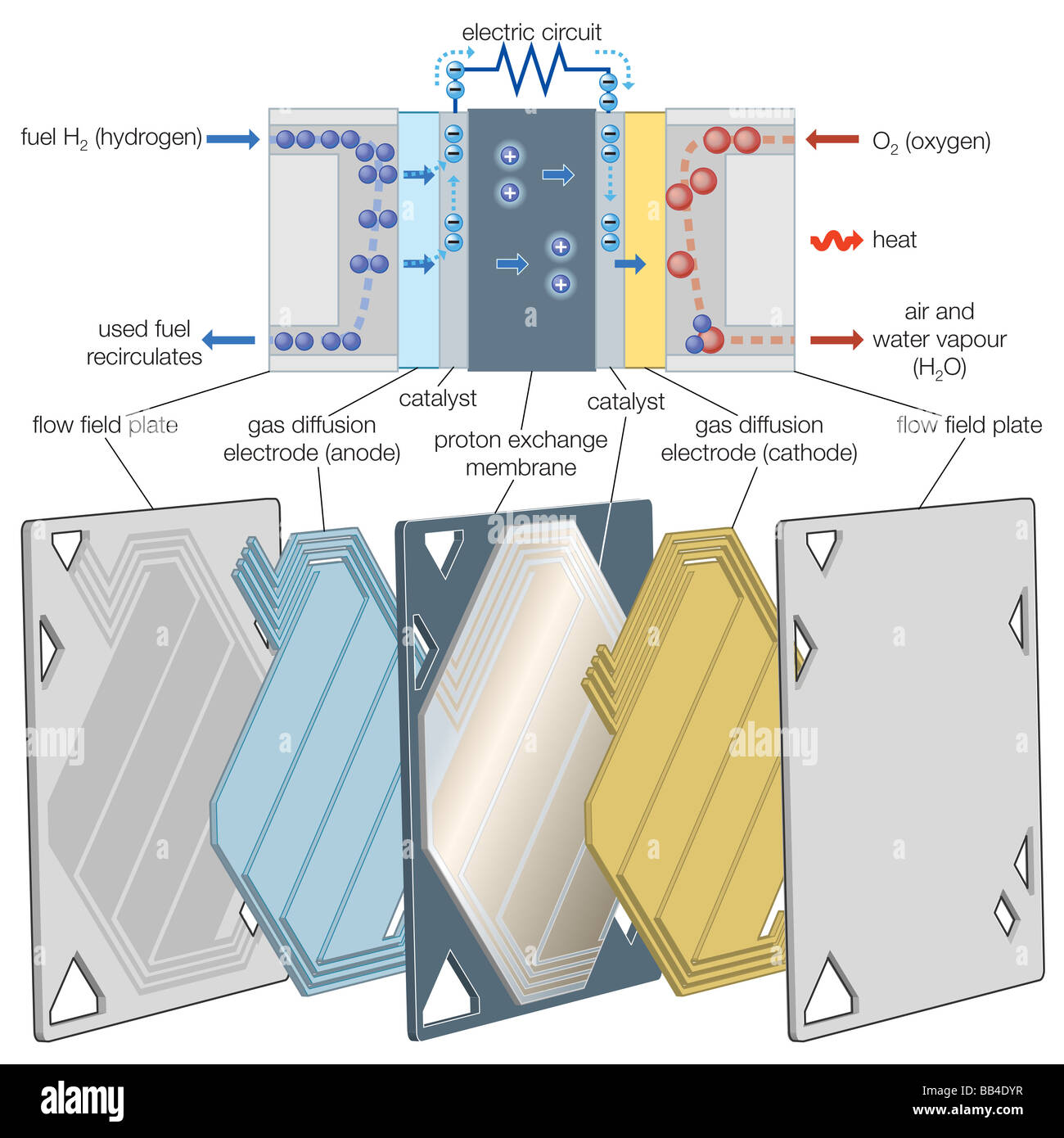 Proton exchange membrane (PEM) fuel cell Stock Photo