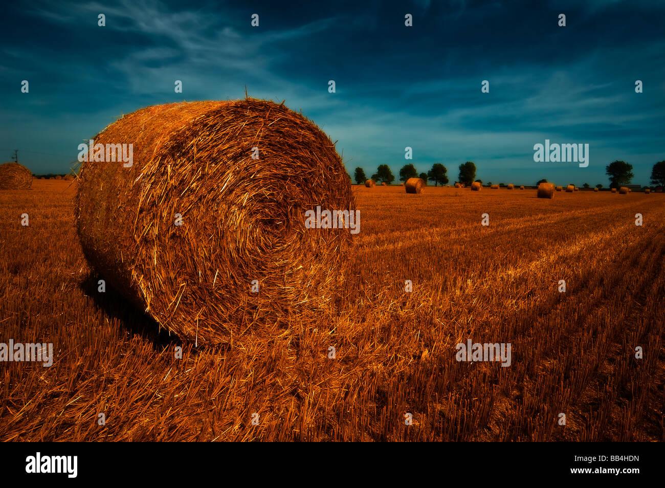 hay bail sunset england - Stock Image