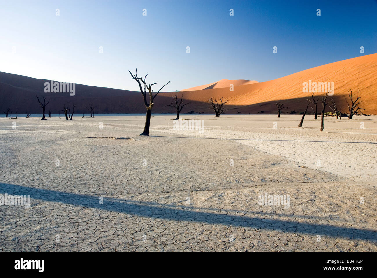 Deadvlei, NAMBIA - JANUARY (3): The sun rises over Deadvlei, a clay pan known for its thousand year old preserved - Stock Image
