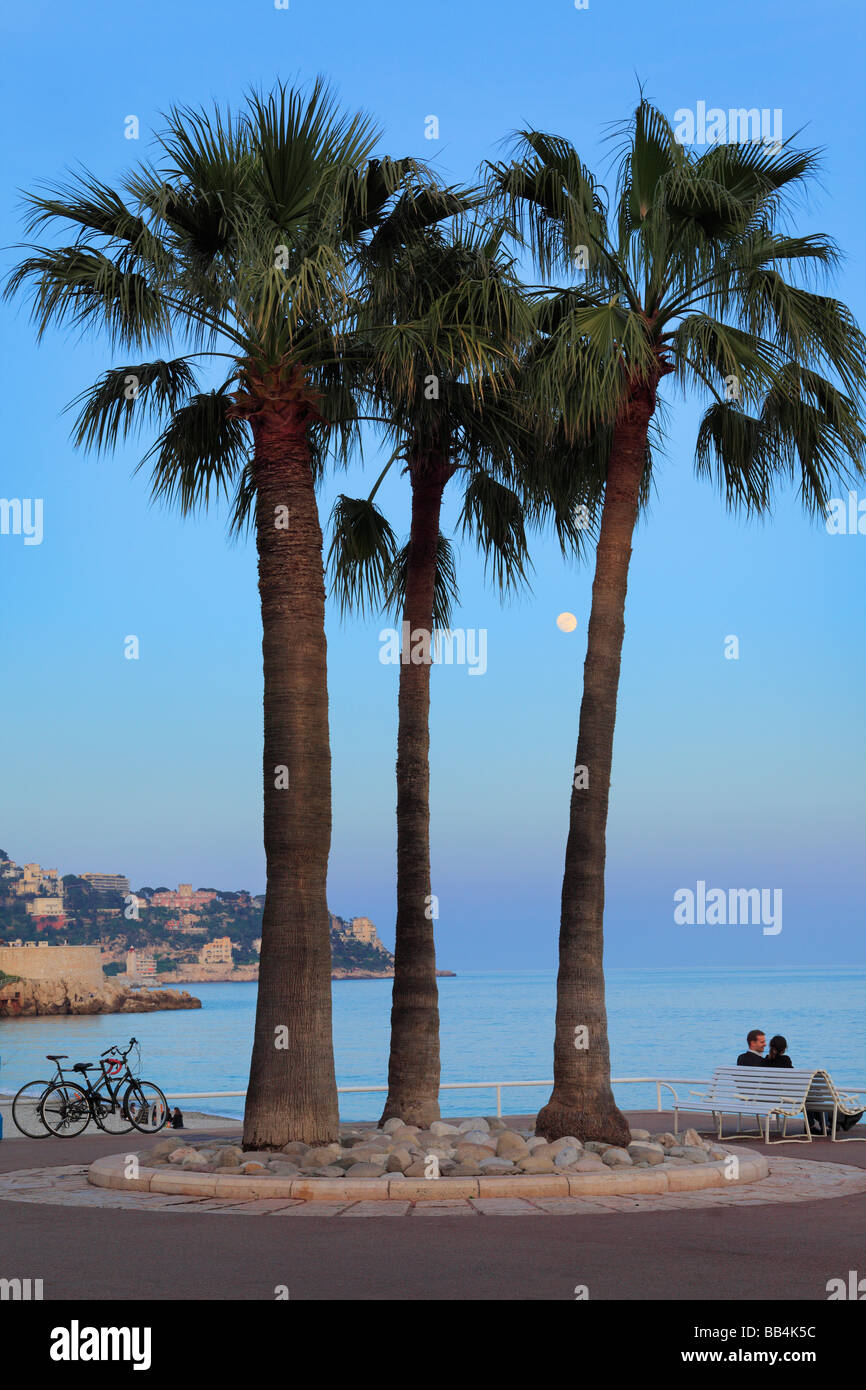 Couple under a few palm trees on Promenade des Anglais in Nice, France on the French riviera - Stock Image