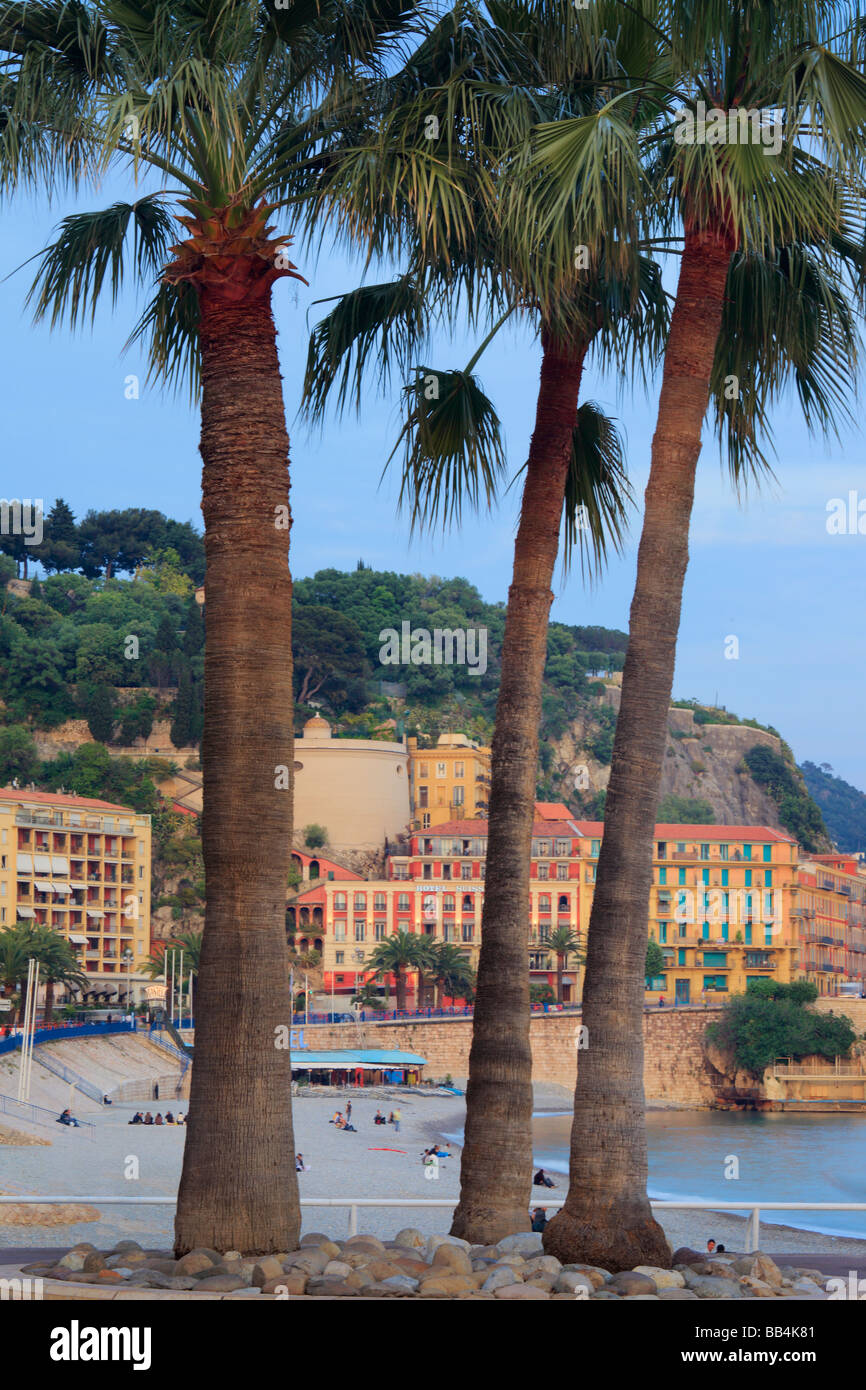 Palm trees on Promenade des Anglais in Nice, France on the French riviera - Stock Image