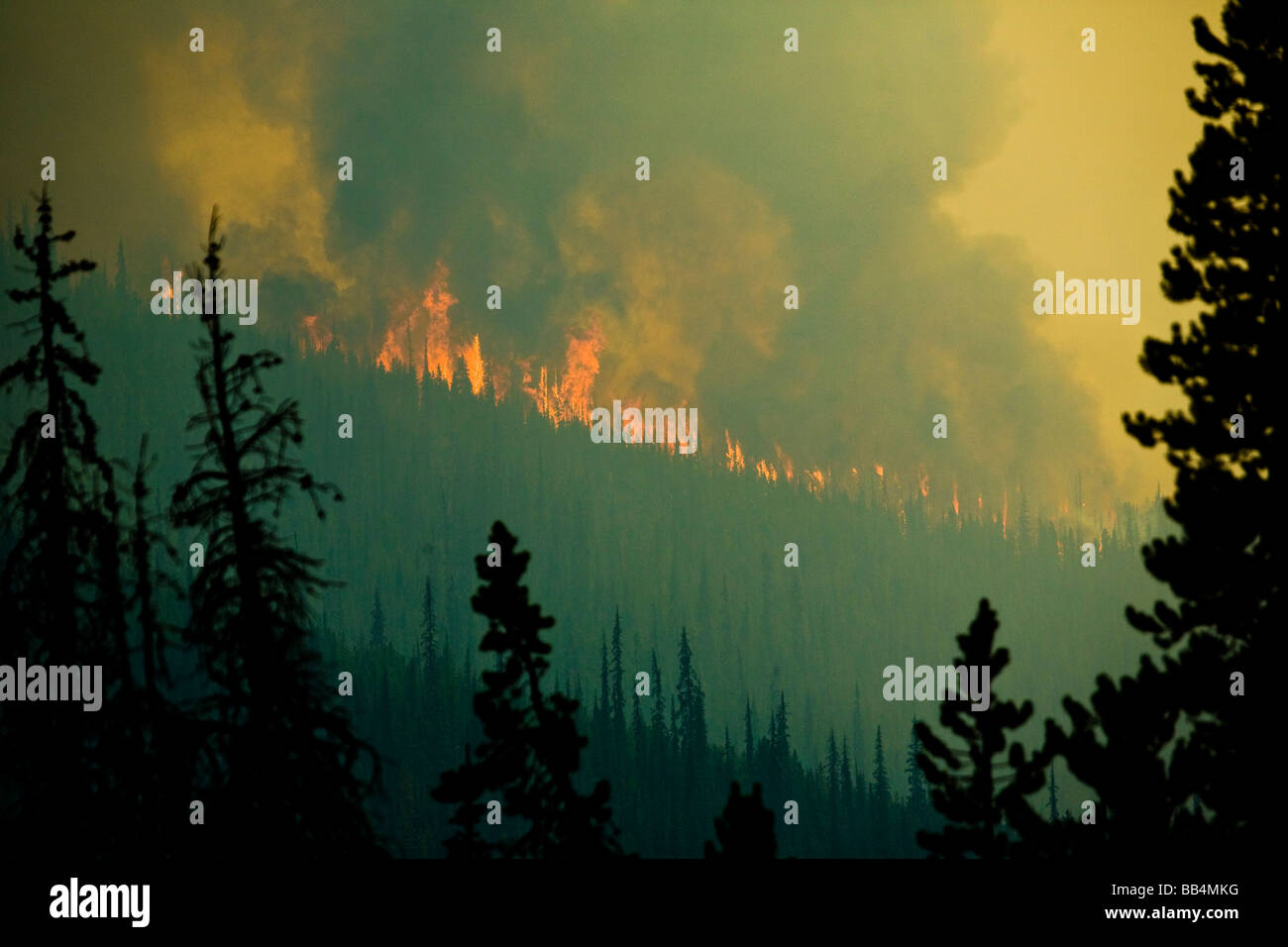 Wildfire in north central Washington, Okanogan National Forest. Tripod Fire, 2006. - Stock Image