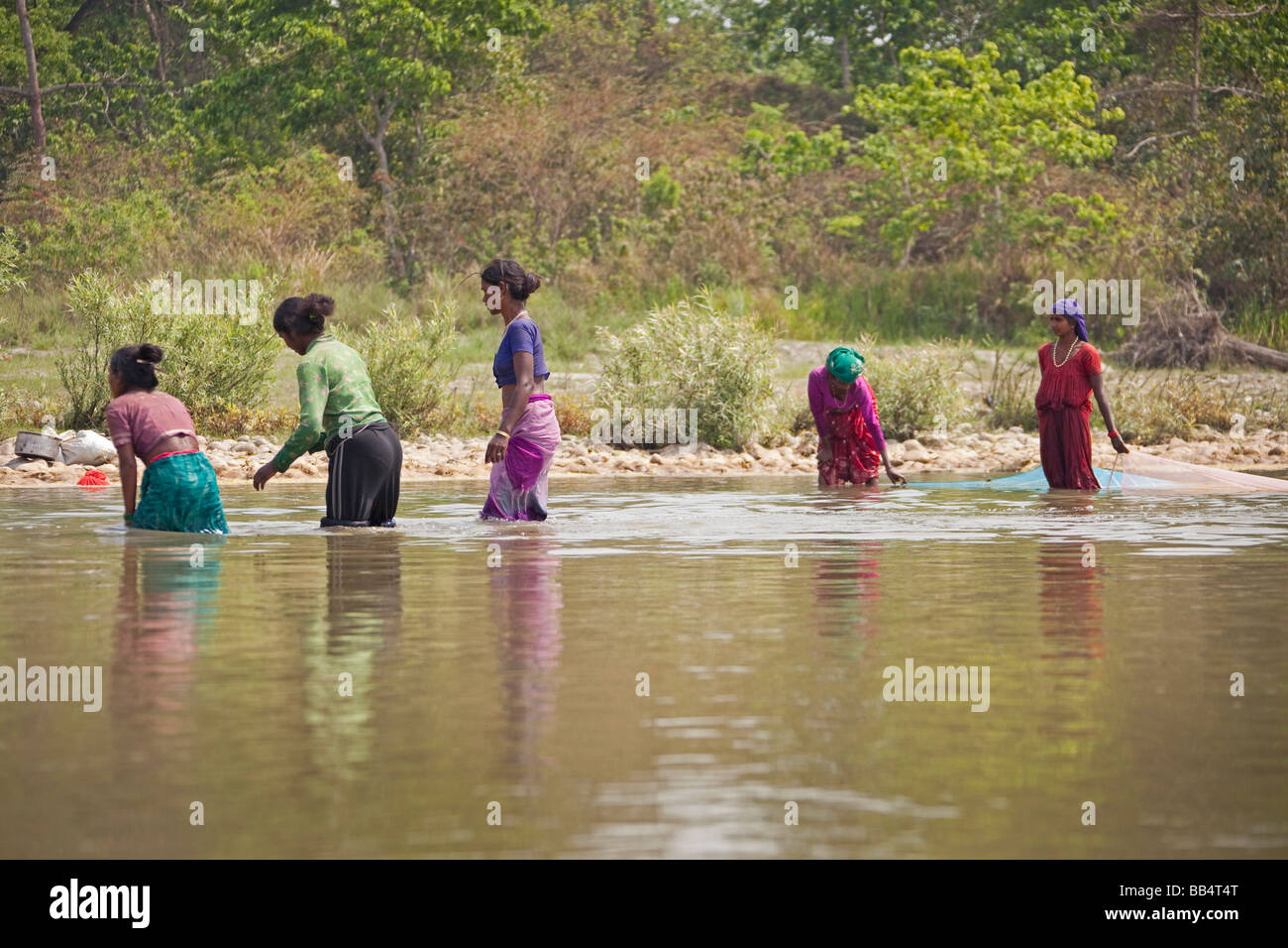 local Women fishing with net waste high in river water Chitwan