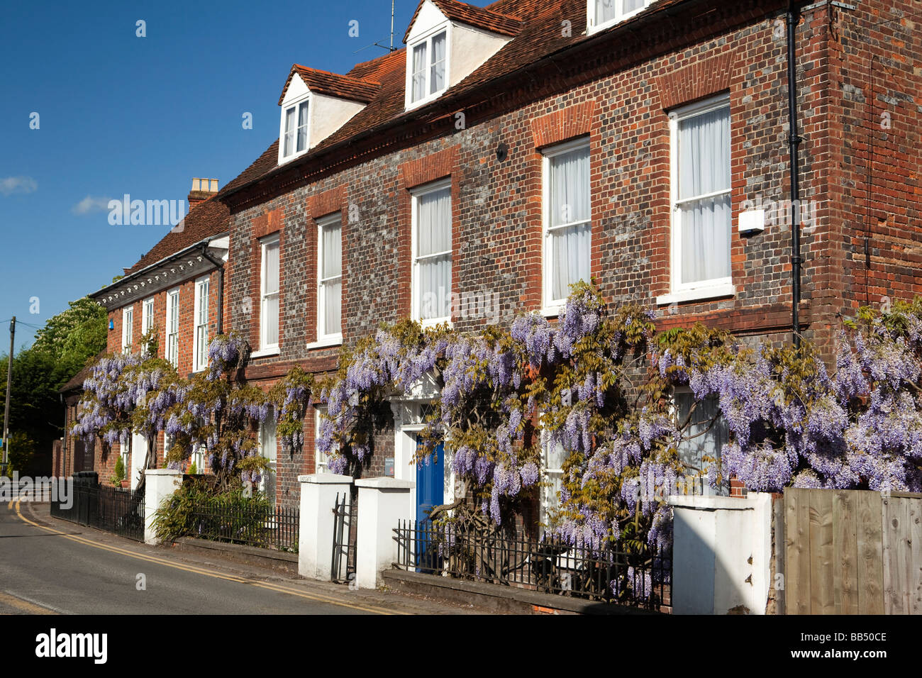 England Berkshire Cookham Sutton Road Wistaria Cottage Wisteria hung front of Eastgate John Lewis building - Stock Image