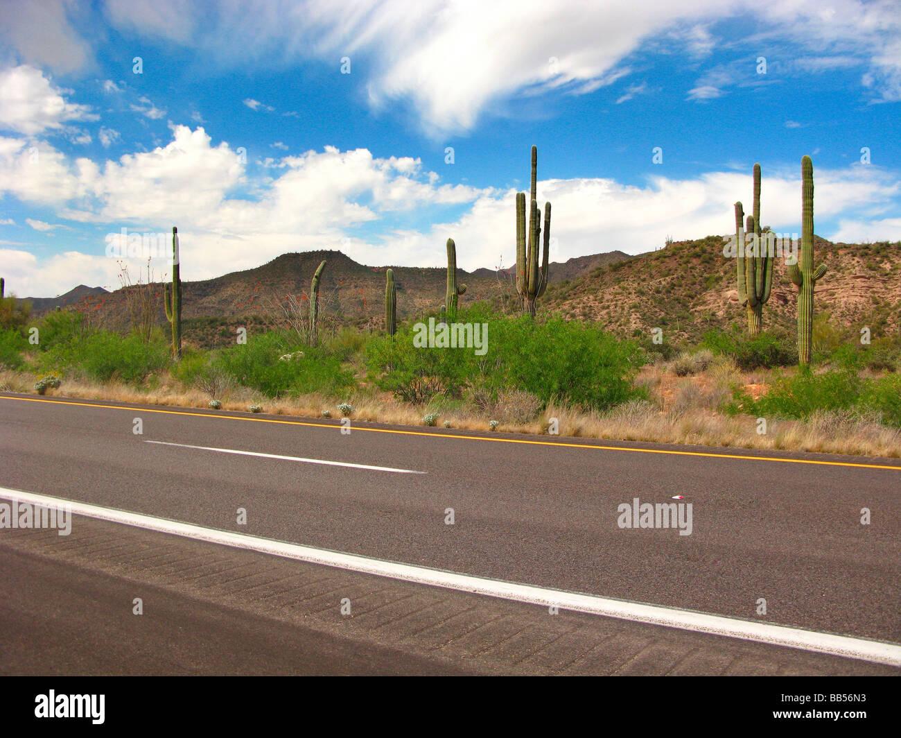 Desert road,empty,clean tarmac,blue skies - Stock Image