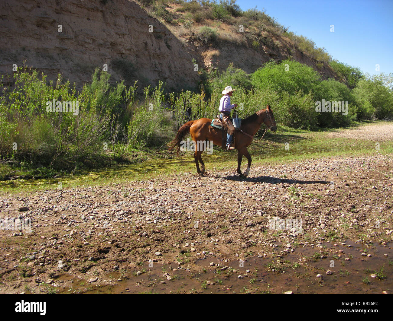 Cowboy on a trail,in landscape. - Stock Image