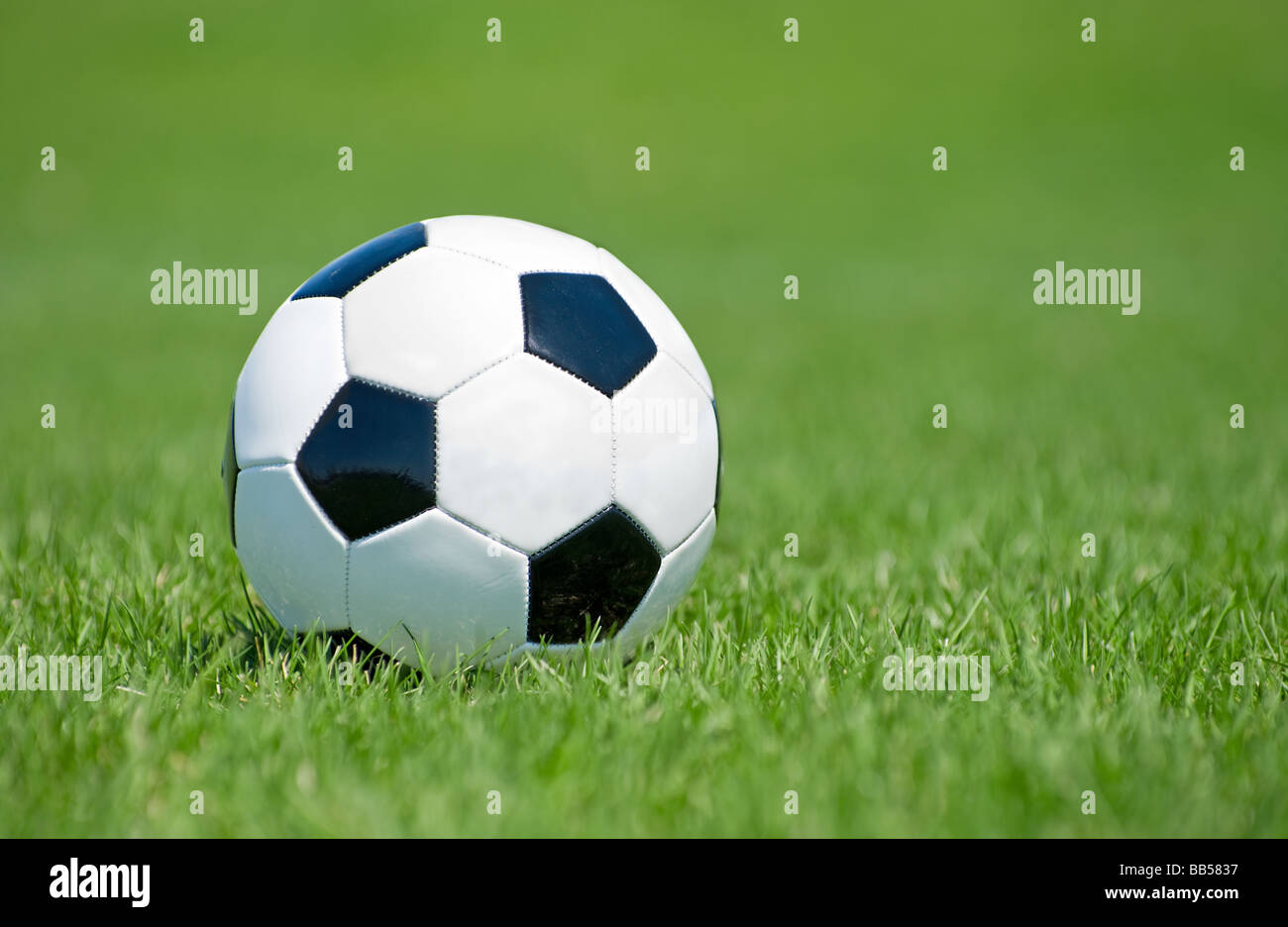 Soccer ball in the grass field - Stock Image
