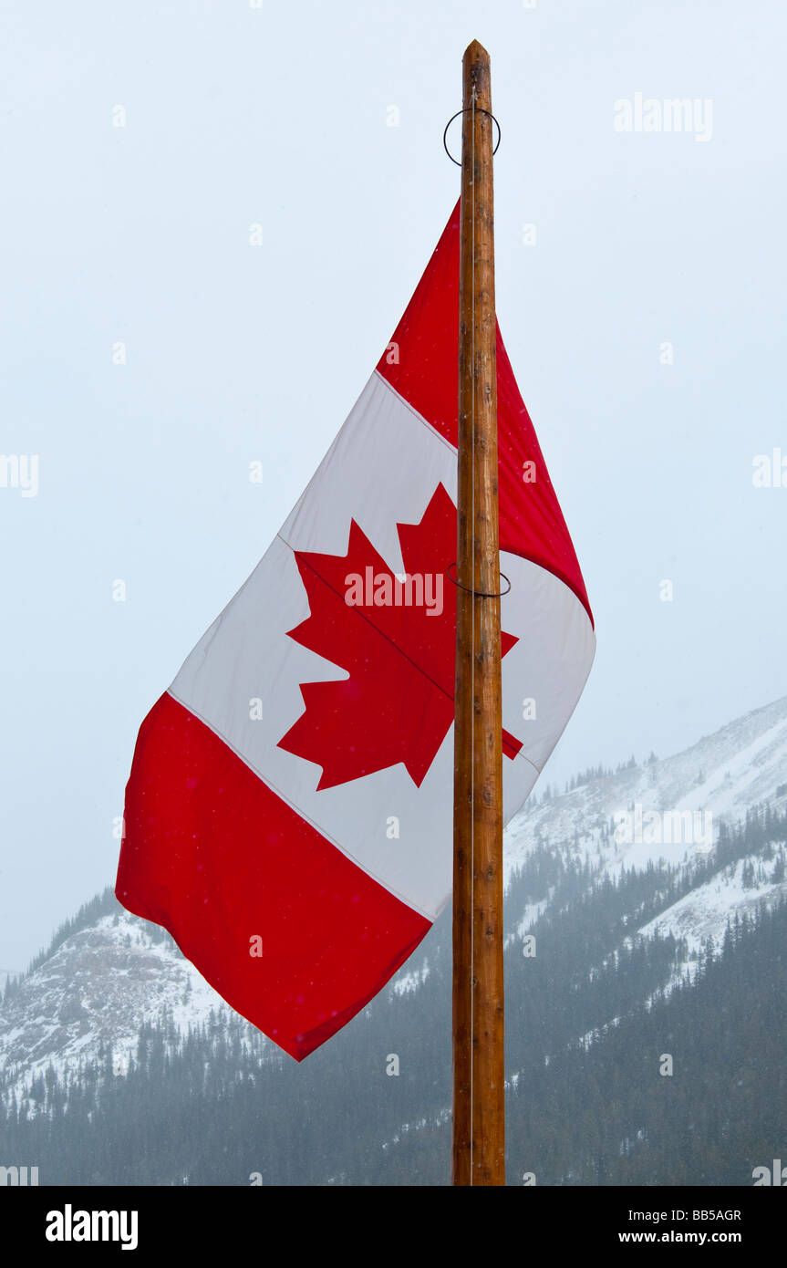 What year did canada adopt the maple leaf flag
